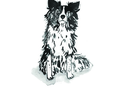 Illustrate a one of a kind original portrait of your pet!