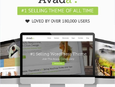 Customize and solve any wp theme  issue specially avada theme