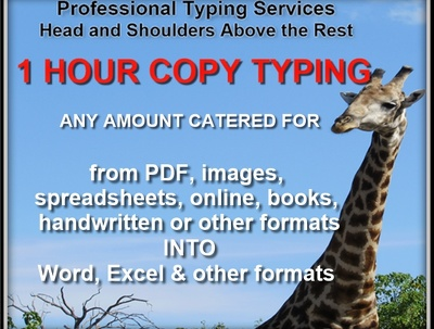 Do 1 hour copy-typing at 80+ wpm so you get more for your hour!