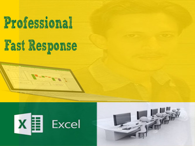 Do 2 hours data entry and excel services
