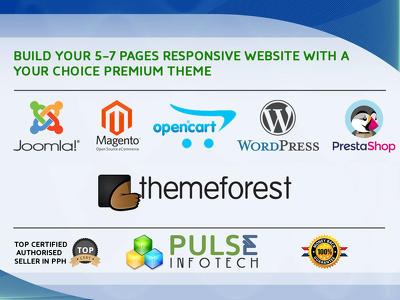 Build your 5-7 pages Responsive website