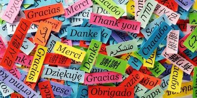 Translate 1000 words English - Lithuanian - English
