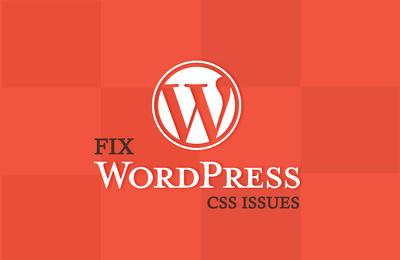 Fix your Wordpress CSS Isuess in 24 hours