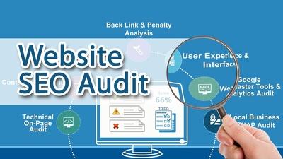 Perform a professional SEO Audit / Report