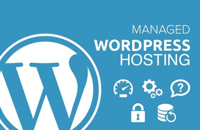 WordPress Hosting with Unlimited Support for a month