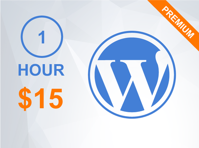 1 hour of updates/customization/support your Wordpress website