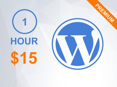 1 hour of updates/customization/support your Wordpress website