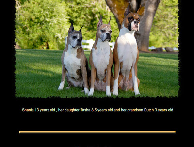 Add sponsor link on a pet website with DA:32 & PA:43 for 1 year