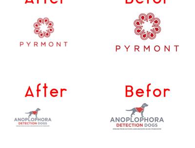 Convert your logo in vector