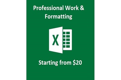 Do 1 sheet of accurate and lightning fast excel work