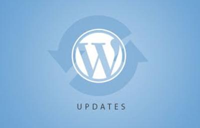 Perform Essential WordPress Maintenance & Optimization tasks
