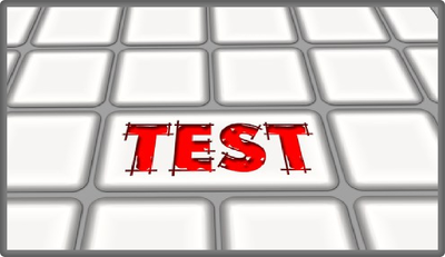 Perform robustness testing on forms of your website