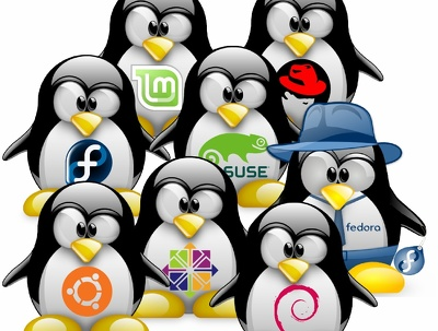 Do linux system administration and solaris administration tasks.