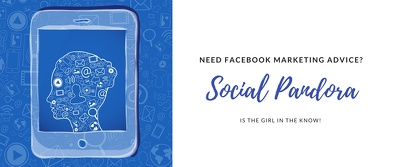 Provide a 1 Hour Coaching Call on your Facebook Ad Campaigns