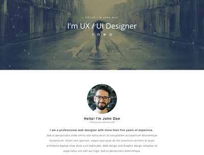 Design a website homepage / landing page provide u notFound Page