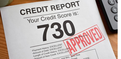 Create custom Paystubs/credit report for any purpose