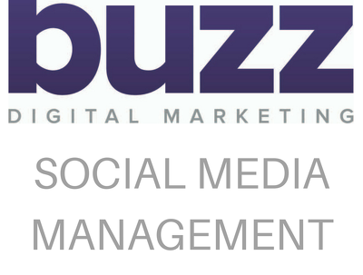 Manage your social media account for 1 month posting 2 x a day
