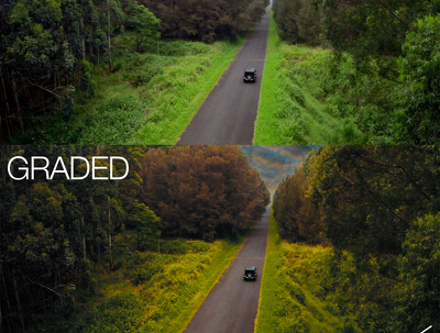Color correct AND color grade a 5 minute or less video for YOU!