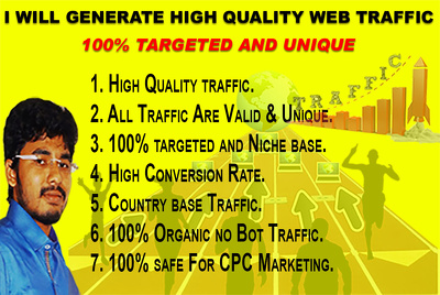 Provide 1000 Organic Traffic To Your Website