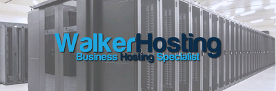 Supply a business hosting account per year