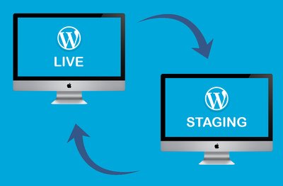 Setup a staging area for your website