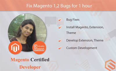 Fix Magento 1,2 Bugs for 1 hour by Magento Certified Developer