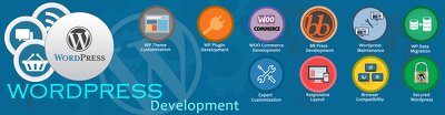 Develop a WordPress website, blog or e-commerce portal.