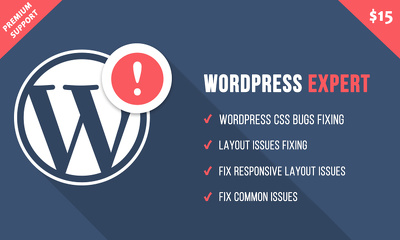 Fix your Wordpress CSS Isuess in 24 hours