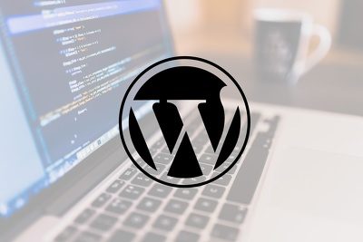 Get any WordPress Issue/Problem fixed (Very Low Price)