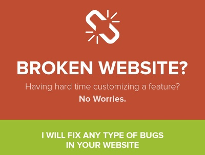 Fix any issues on any website , within 24 working hours response