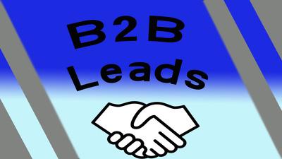 Provide 500 B2B Leads