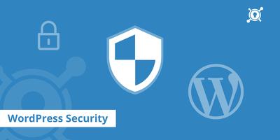 Find WordPress websites vulnerabilities