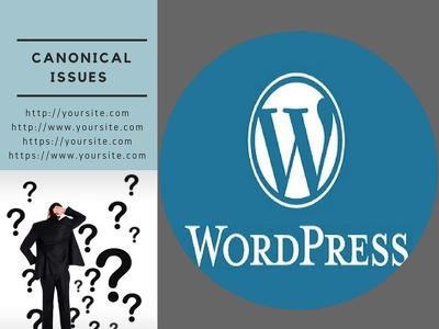 Fix Canonical Issues Of Your WordPress Site