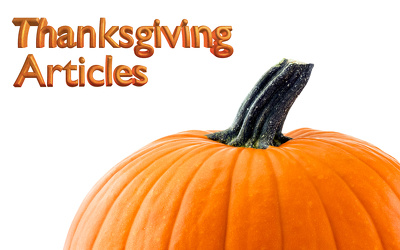 Write a warm 'n fuzzy 500 word article about Thanksgiving