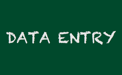 1 hour data entry in Excel, Wordpress, Word