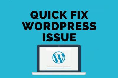 Fix Wordpress Issue, Wordpress Error