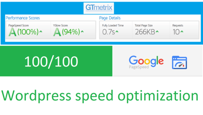 Do Wordpress Speed Optimization To Make Your Website Faster (85+