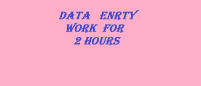 Do all types of data entry work for 2-4 hours