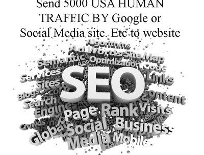 Send 5000 USA HUMAN TRAFFIC BY Google or Social Media site. Etc