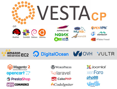 Setup a new VESTA CP Server (Free cPanel like Server Manager)