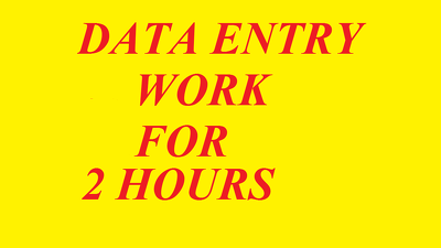 Do all type of data entry job for 2 hours