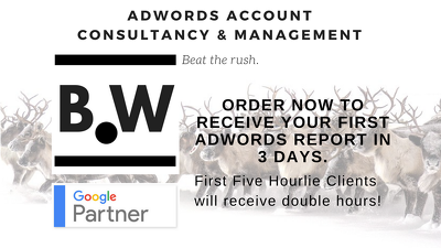 AdWords (PPC) Account Consultancy & Management