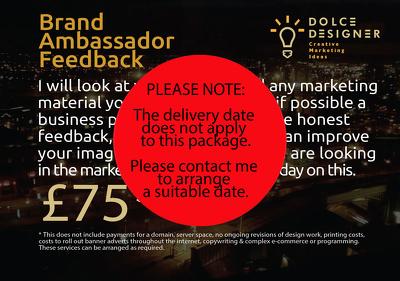 Brand  Ambassador Feedback