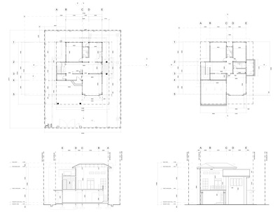 Create Revit plans, elevation, sections from sketches, PDFs.