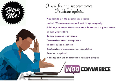 Hire for 1 hour of any woocommerce Problem/updates