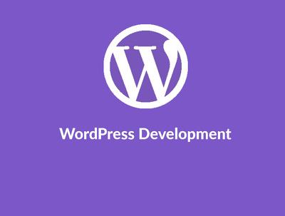 WordPress Developer for you (hourly)