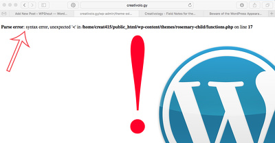 Fix your Wordpress CSS / HTML / PHP error