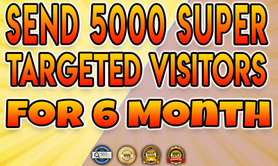 Send 5000 Super Targeted Visitors Daily For Six Month