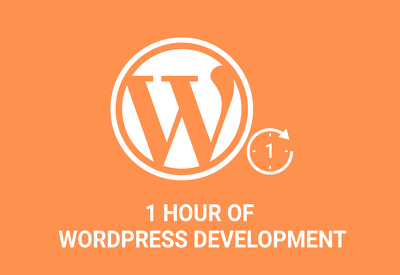 Work For 1 Hour On Your WordPress Website