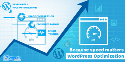 Optimize speed and improve performance of your wordpress website